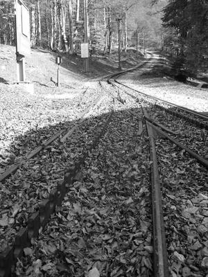 the tracks split. shot at the bellavista station.